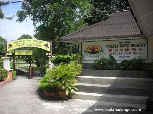 Firefly Park Resort Kuala Selangor - Fireflies map of us
